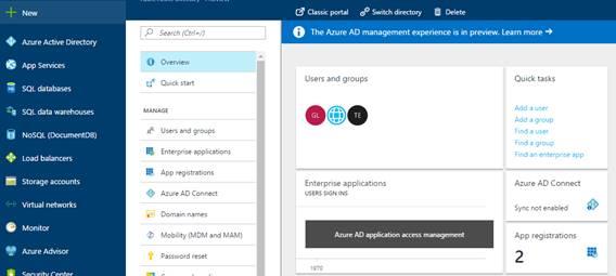 Azure portal after Azure Active Directory has been selected