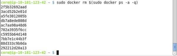 Dock20