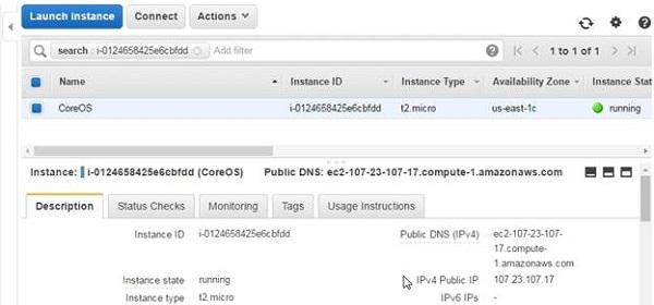 Getting the Public IP Address